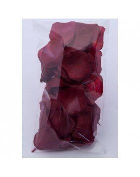 100 petalos color rojo vino